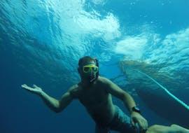 Snorkeling à Machico avec Haliotis Madeira