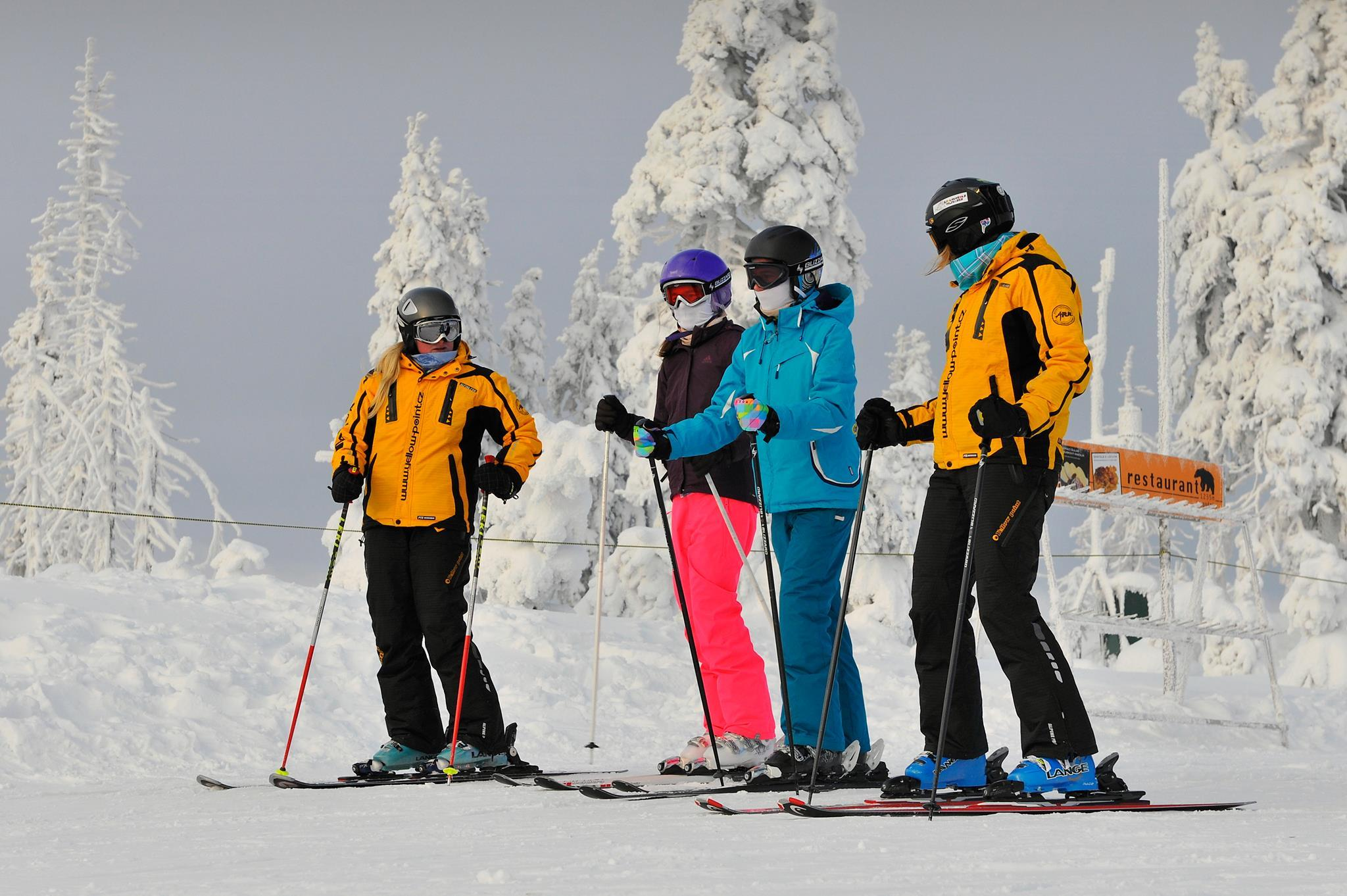 Cours particulier de ski pour Adultes pour Tous niveaux