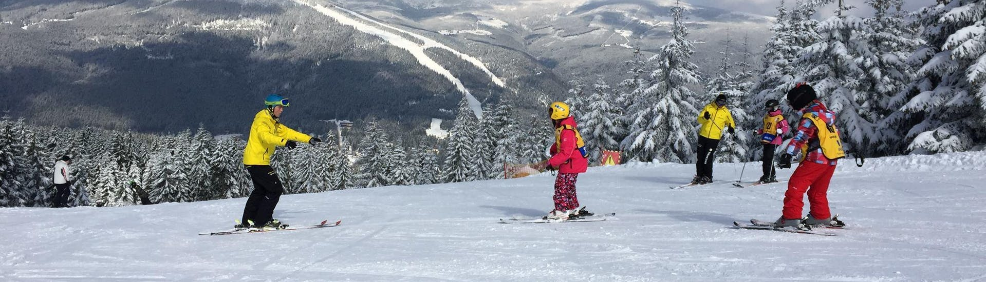 Ski Lessons for Kids (from 4 years) - Beginner