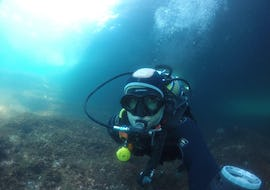 Scuba Diving - Guided Boat Dives from Cascais