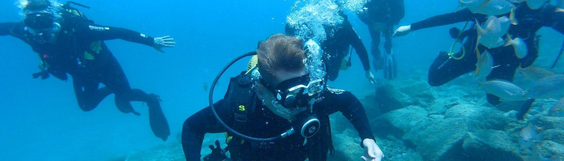 Trial Scuba Diving for Beginners - Las Vistas Beach