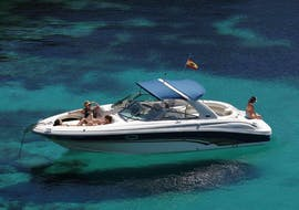 Balade privée en bateau Marbella avec Baignade & Observation de la faune avec Marbella Charter