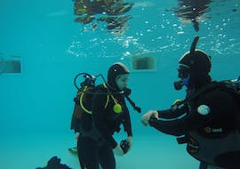 Trial Scuba Diving Course for Beginners - Berlengas