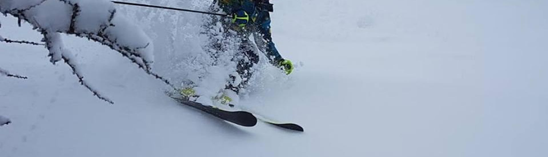 Ski Instructor Private for Adults