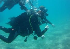 Discover Scuba Duiken in Hersonissos voor beginners met Diver's Club Crete