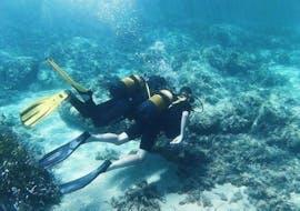 Scuba Diving Course - FFESSM Level 1