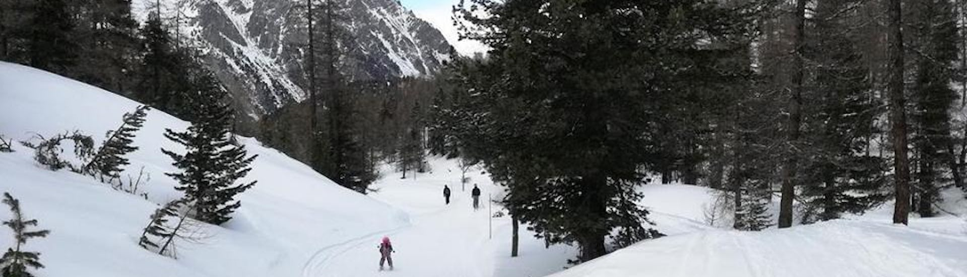 Ski Instructor Private for Kids - From 2 Participants