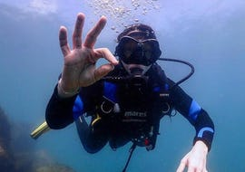 Discover Scuba Diving for Beginners - Barcelona