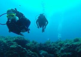 Scuba Diving Course - SSI Junior Open Water Diver (10-14 y.)