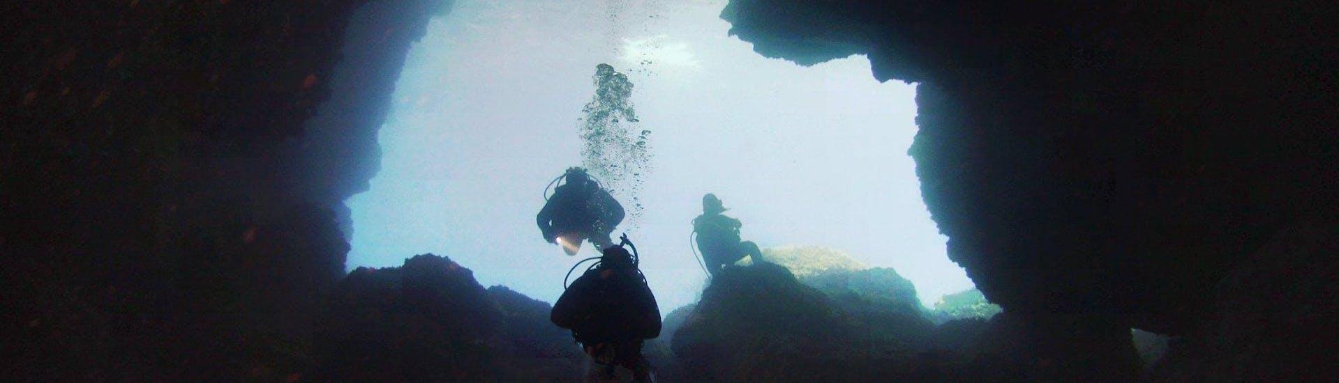 Wreck, Cave & Night Dives - Torrenova
