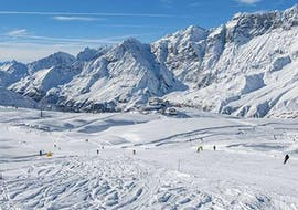 Ski Private Instructor All Day for Adults/Children