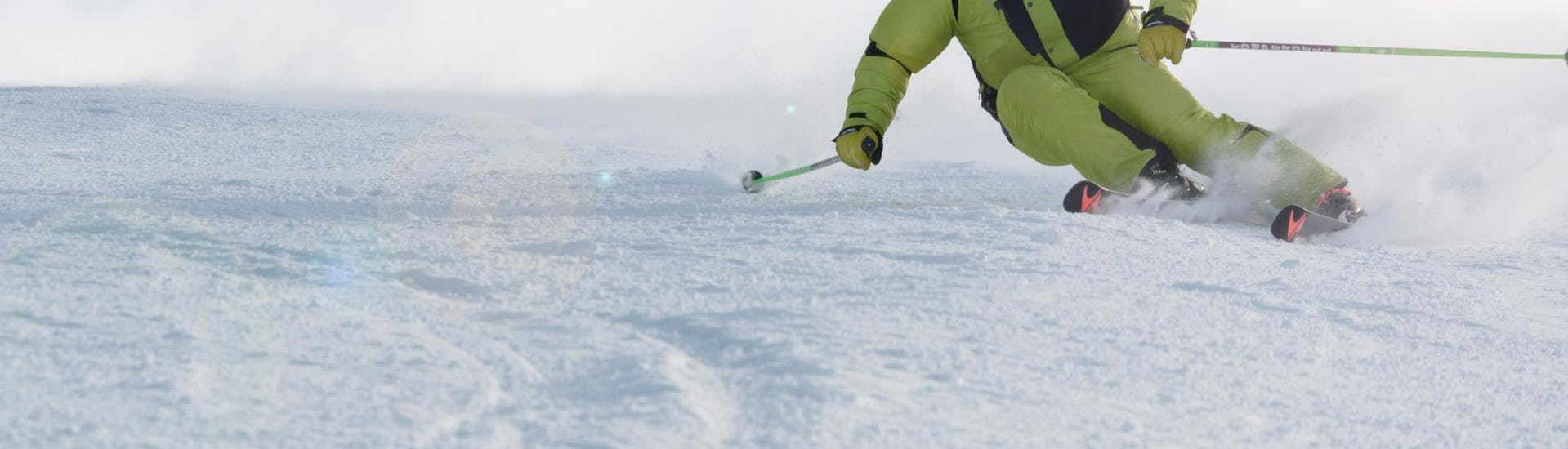 "Private Ski Lessons for Adults ""Full Day"" - All Levels"