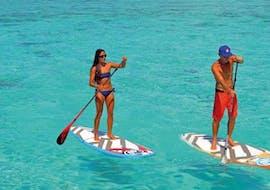 Location de stand up paddle à Porto Pollo (dès 10 ans) pour Dèbutants