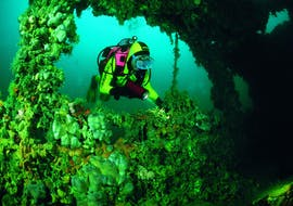 Guided Wreck Dive from Vrsar for Certified Divers