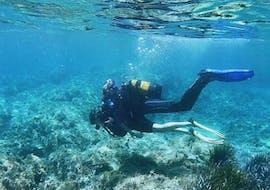 Scuba Diving Course - SSI Open Water Diver