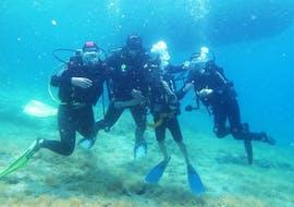Scuba Diving Course - PADI Open Water Diver