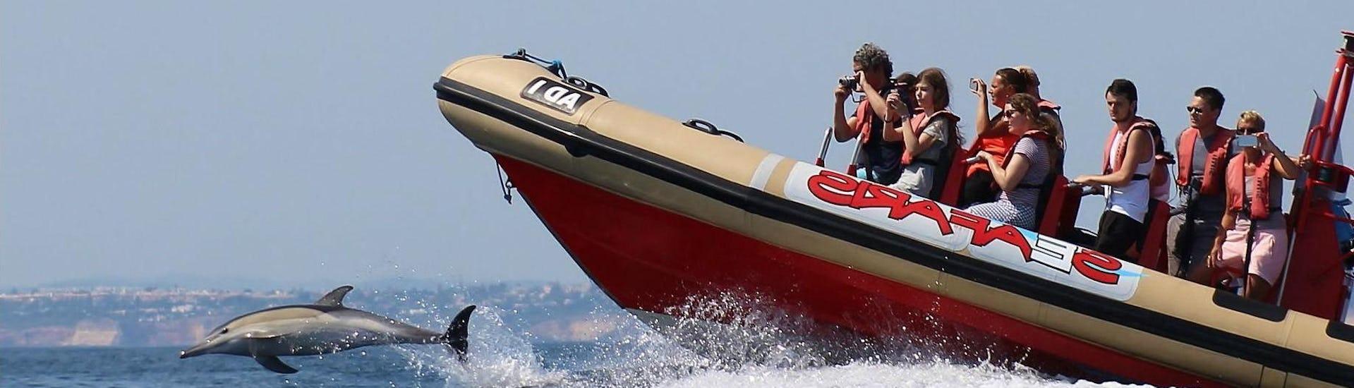 boat-tour-dolphin-watching-portimao-seafaris-hero