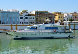 The tour participants look forward to getting to know Seville in all its facets during their Boat trip on the Río Guadalquivir with Seville City Tour from Fun Ride Sevilla.