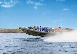 """Sydney Boat Tours """"Bondi Bash"""" from Circular Quay"""