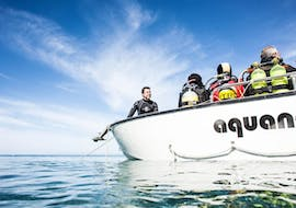 Scuba Diving - Guided Reef & Boat dives in Elba