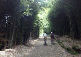 Mountain Bike Tour around Lagoa das Furnas on São Miguel