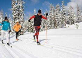 Cross-Country Private - All Ages & Levels
