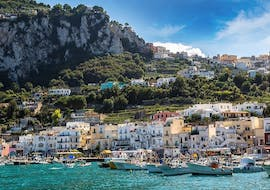 Boat Tour from Sorrento to Capri - Half Day