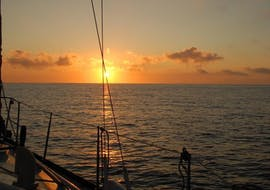 The boat sails towards sunrise during the Sunrise Catamaran Cruise from Pollença with Dolphin Watching organised by Robinson Boat Trips.