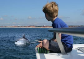 During a catamaran tour from Vilamoura, a small boy is watching jumping dolphins whilst relaxing abord a modern catamaran from Ocean Quest.