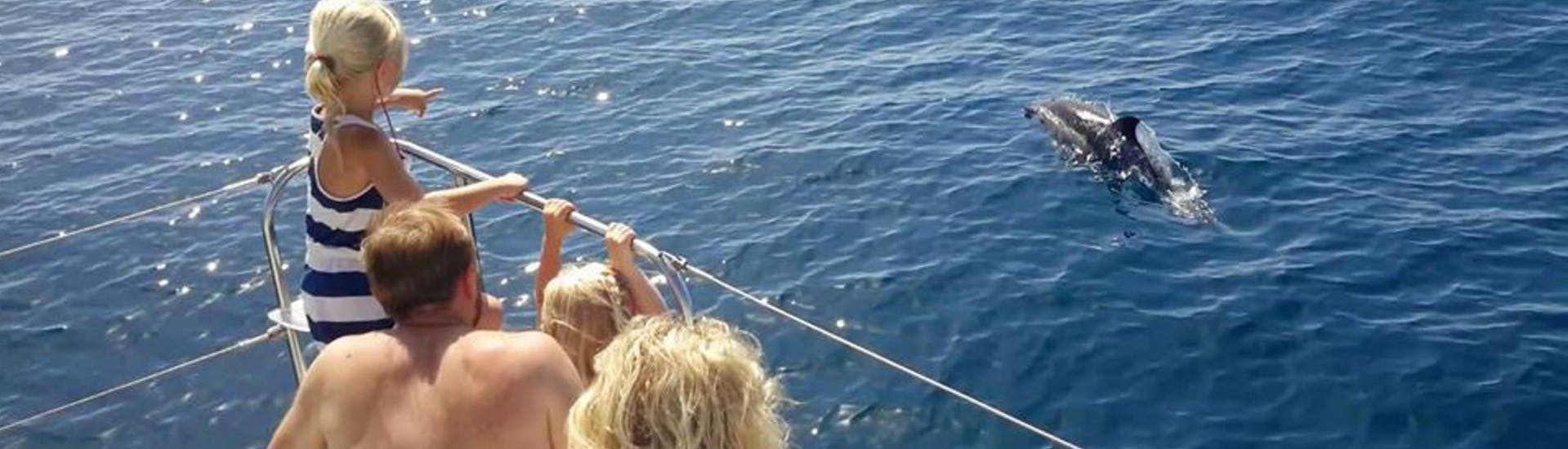 "Private Catamaran Tour ""Dolphin Sighting"" (12P) - Estepona"