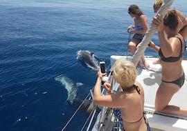 "Private Catamaran Tour ""Dolphin Sighting"" (18P) - Estepona"