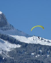 Paragliding Chamonix (c) Pixabay