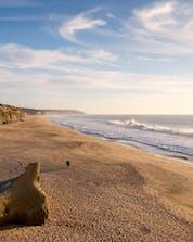 Surf Costa da Caparica (c) Shutterstock