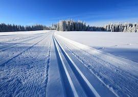 Moniteur de Ski de Fond Privé - Haute Saison