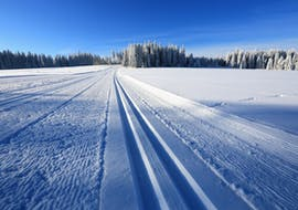 Private Cross Country Skiing Lessons in High Season