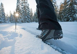 Cross-country Skiing Lessons - Classic & Skate