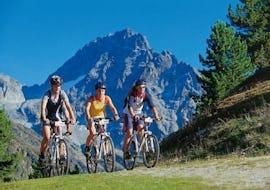 Mountain Bike Tour - Hut Trail