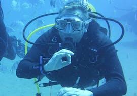 Scuba Diving Course for Beginners - PADI Scuba Diver with Dive Club Ocean Trek