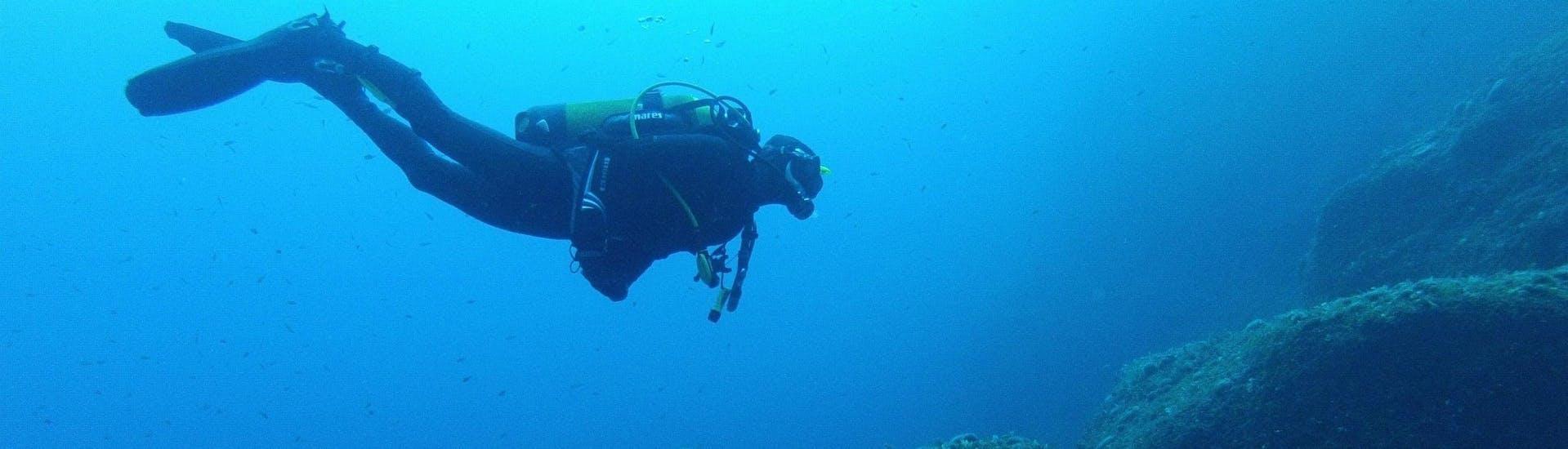 Discover Scuba Diving in Gozo