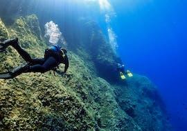 Formation de plongée (PADI) à Nea Makri pour Plongeurs certifiés