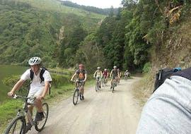 Bike Tour Ponta Delgada and Pineapple Tour