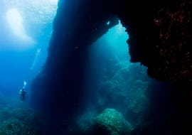 Scuba Diving - Guided Reef & Bay Dives in Gozo provided by Endless Oceans Dive Centre Gozo is the perfect way to enjoy the breathtaking underwater scenery of Malta.