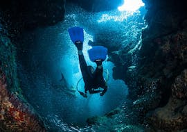 Guided Boat Dives around Pag for Certified Divers