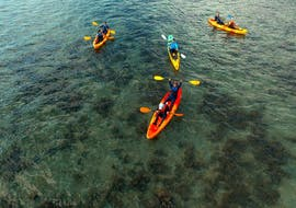 Our guests on the early morning water during the Sunrise Kayaking Tour in Cairns with Pacific Watersports.