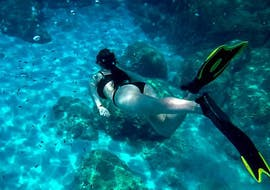 Snorkeling Excursion around Cyprus