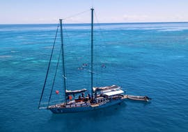 An image of the Ocean Free sailing schooner anchored in the sea during the Great Barrier Reef Snorkeling Boat Trip.