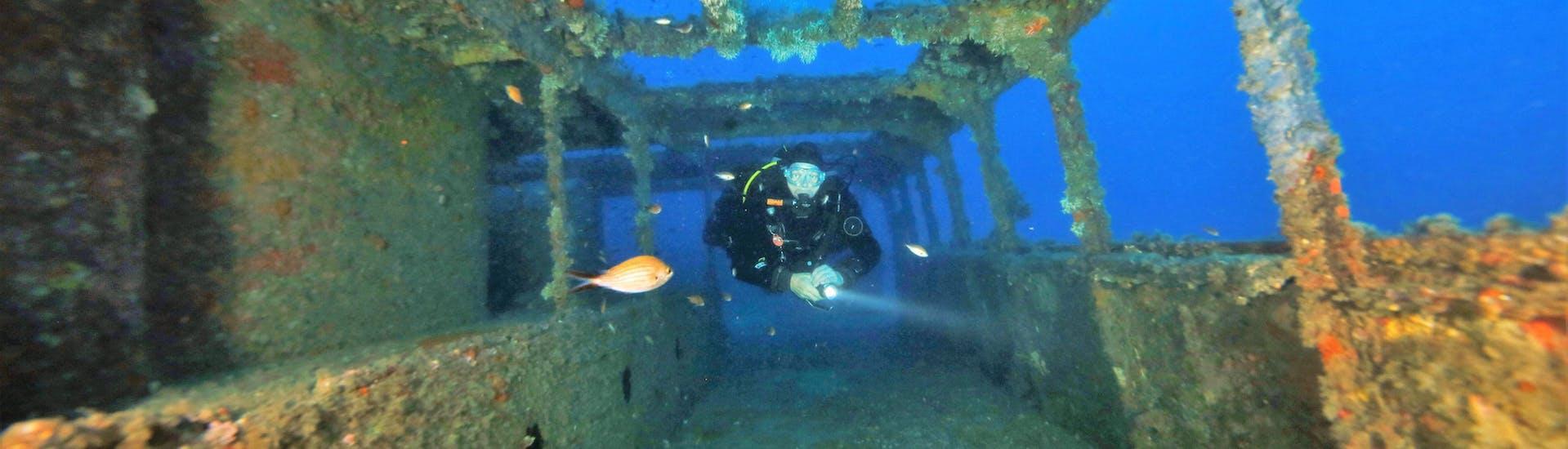 Ein Taucher erkundet während einem der geführten Boots- und Landtauchgänge von Saint Paul's Bay mit Octopus Garden ein Schiffswrack in Malta.