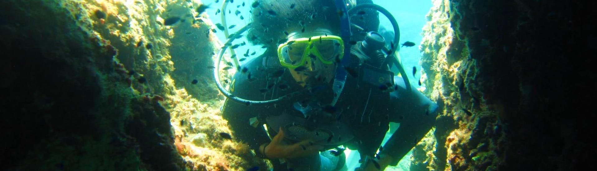 A certified diver is exploring the reefs around Corfu during a Guided Boat Dive in Megachoros Reef for Certified Divers with Herkules Marine Activities Corfu.