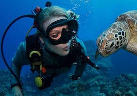 guided-dives-on-the-great-barrier-reef-for-certified-divers-passions-of-paradise-cover