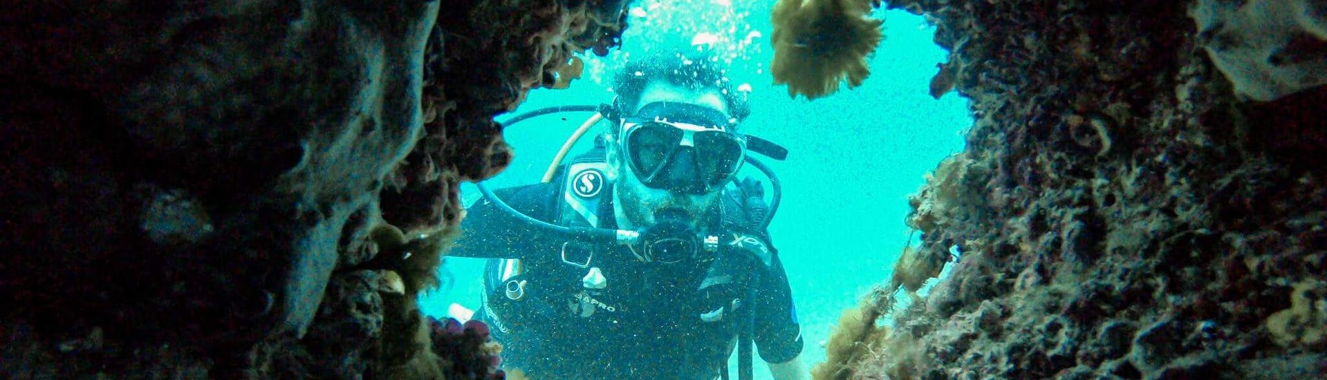 Trial Scuba Diving Course for Beginners - Discover Scuba